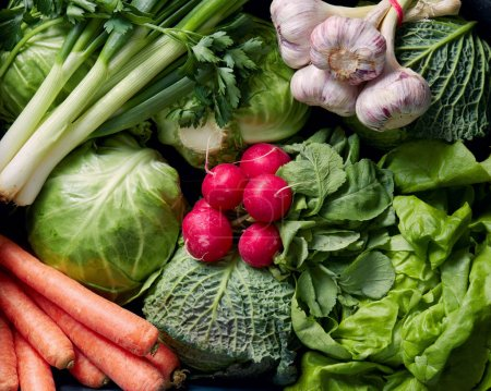 Photo for Close-up photo of Fresh organic vegetables - Royalty Free Image