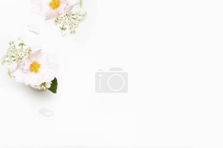 Flowers on white background. Flat lay. Mock-up desk. Beauty