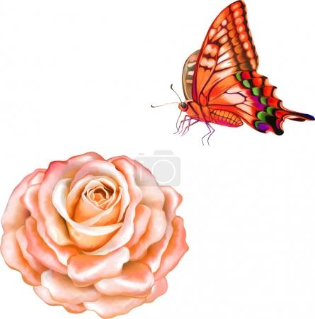 fresh flower with butterfly