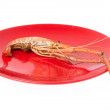 Shrimp grilled with dish isolated on white backgro...