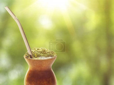 Chimarrao, traditional mate hot tea. Drink of South of the Brazil. Also knowed like mate. On sunny green bokeh background