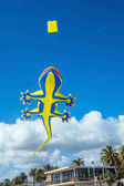Lizard-shaped colorful kite flying in blue sky at the beach