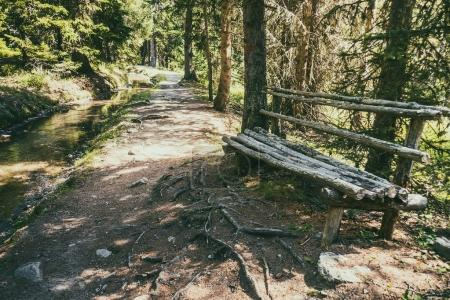 Wooden bench made of tree trunks in mountain forest