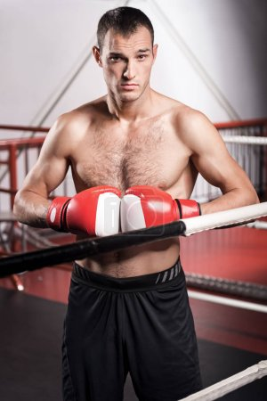Handsome boxer with gloves in front of chest