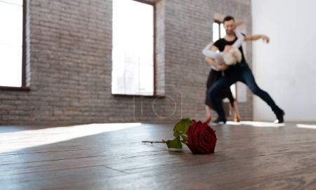 Charismatic dance teacher tangoing with senior woman at the ballroom