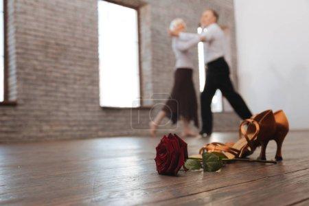 Photo pour Symboles de la danse passionnée. Des retraités talentueux, capables de tanguer tout en participant à la performance artistique et en exprimant leur amour - image libre de droit