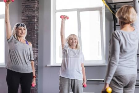Pleasant sporty women exercising in a fitness club