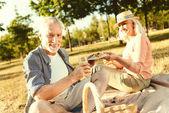 Happy elderly couple having a picnic