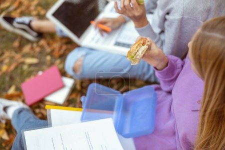 Foto de Foto superior sobre chicas hambrientas que se preparan para las pruebas, disfrutando de su descanso en el parque. - Imagen libre de derechos