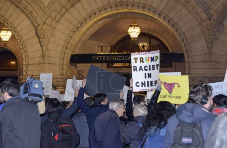 Leftists and instigators protesting Donald