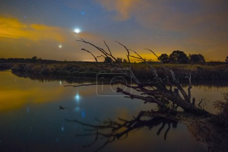 Stars Shining in sky at night over river