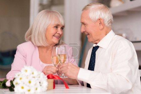 Cheerful senior couple raising their glasses to love