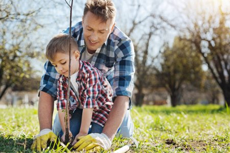 Team of two male family members gardening together