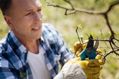 Adult man working with secateurs