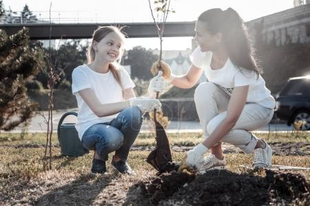 Cheerful pretty girl helping to plant a tree