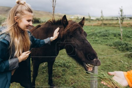 Young woman stroking furry horse