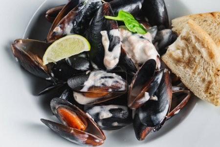 Photo for Steamed Mussels served on white plate - Royalty Free Image