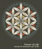 buddhism chakra illustration: Flower of Life Ornate