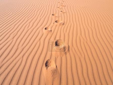 Footprints on a dune in Dead Vlei