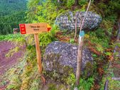 Way to Pico da Vara, the highest mountain on the island of So Miguel, in the Portuguese archipelago of the Azores.