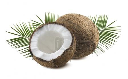 Photo for Whole and half coconut with leaves isolated on white background as package design element - Royalty Free Image