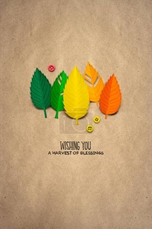 Thanksgiving day concept photo of leaves