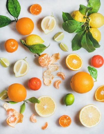 Photo for Variety of fresh citrus fruits for making juice or smoothie over light grey marble table background - Royalty Free Image