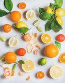 """Постер, картина, фотообои """"Разнообразие свежих цитрусовых фруктов"""""""