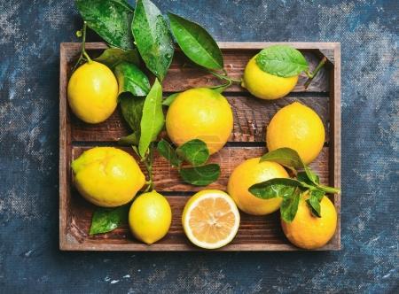 Photo pour Citrons fraîchement cueillies à feuilles dans le plateau en bois rustique sur fond de contreplaqué minable bleu foncé - image libre de droit