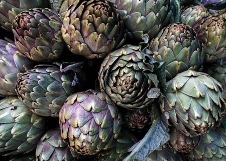 Artichokes on farmers market