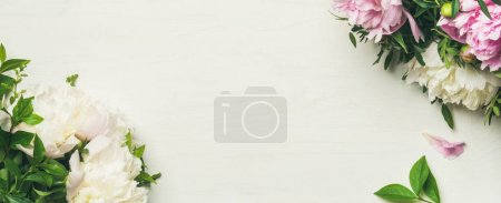 peony flowers over white