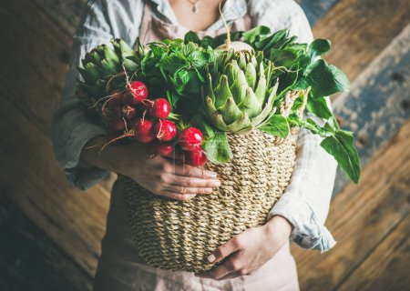 Female farmer in linen apron holding basket of fresh garden vegetables and greens in her hands, rustic wooden barn wall at background