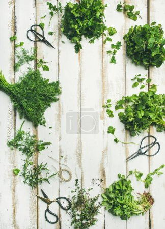 Bunches of various fresh green herbs. Parsley, mint, dill, cilantro, rosemary, thyme over wooden background