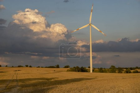 windmills wind turbines in the