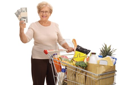 Woman posing with shopping cart and money stacks