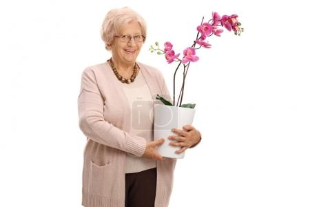 Mature woman holding an orchid flower in a pot