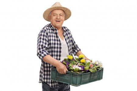 gardener holding a crate filled with flowers