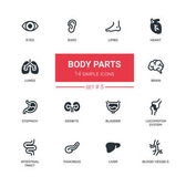 Body parts - Modern simple thin line design icons pictograms set