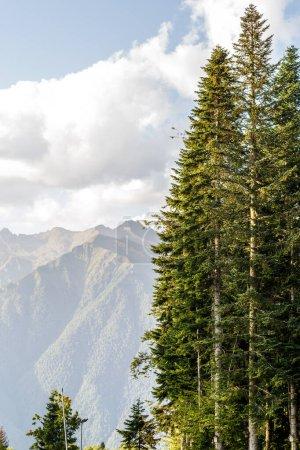 Photo pour Photo d'une région montagneuse pittoresque avec arbres et ciel nuageux pendant la journée - image libre de droit