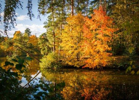 Photo pour Photo des arbres et de l'étang d'automne dans l'après-midi - image libre de droit