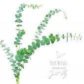 Watercolor style eucalyptus branches bouquet