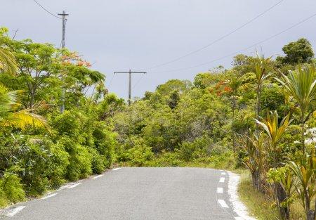 Pacific Island Road
