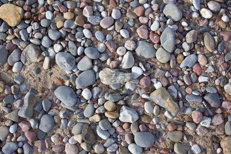 Photo pour Belle pierre Gros plan sur la Baltique rive Courlande Spit - image libre de droit