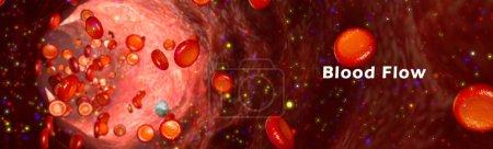 human blood flow in vessel