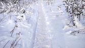 """Постер, картина, фотообои """"Путь в зиму на открытом воздухе в парке. Заснеженная дорога в городе, следы сапог в снегу."""""""