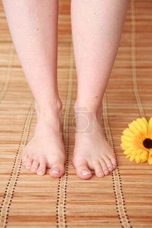 Photo pour Soin pour les belles jambes de femme avec fleur. Belle femme jambes . - image libre de droit