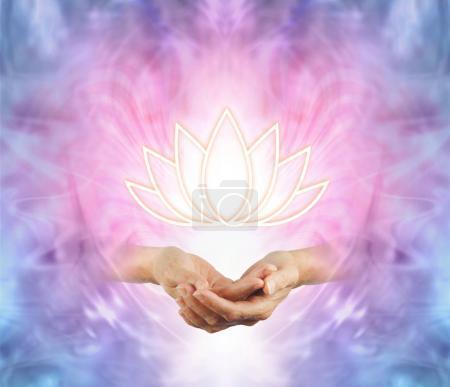 Photo pour Le Lotus Sacré - mains féminines avec un lotus lumineux fleur symbole flottant au-dessus sur un fond rose violet bleu et blanc énergie - image libre de droit