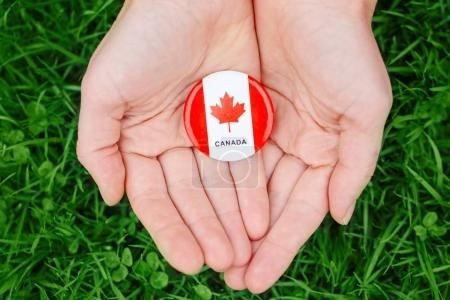 hands palms holding round badge with red white canadian flag maple leaf, on green grass forest nature background outside, Canada Day celebration