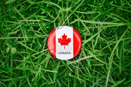 badge with red white canadian flag maple leaf lying in grass on green forest nature background outside, Canada day celebration