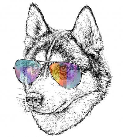 Illustration pour Illustration vectorielle conception de loup dessiné à la main avec des lunettes de couleur - image libre de droit